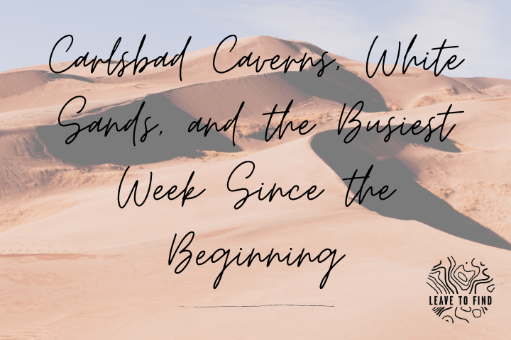 Carlsbad Caverns, White Sands, and the Busiest Week Since the Beginning